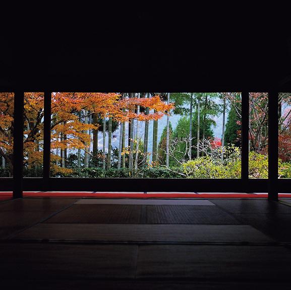 京都の庭園の見どころは、柱や窓