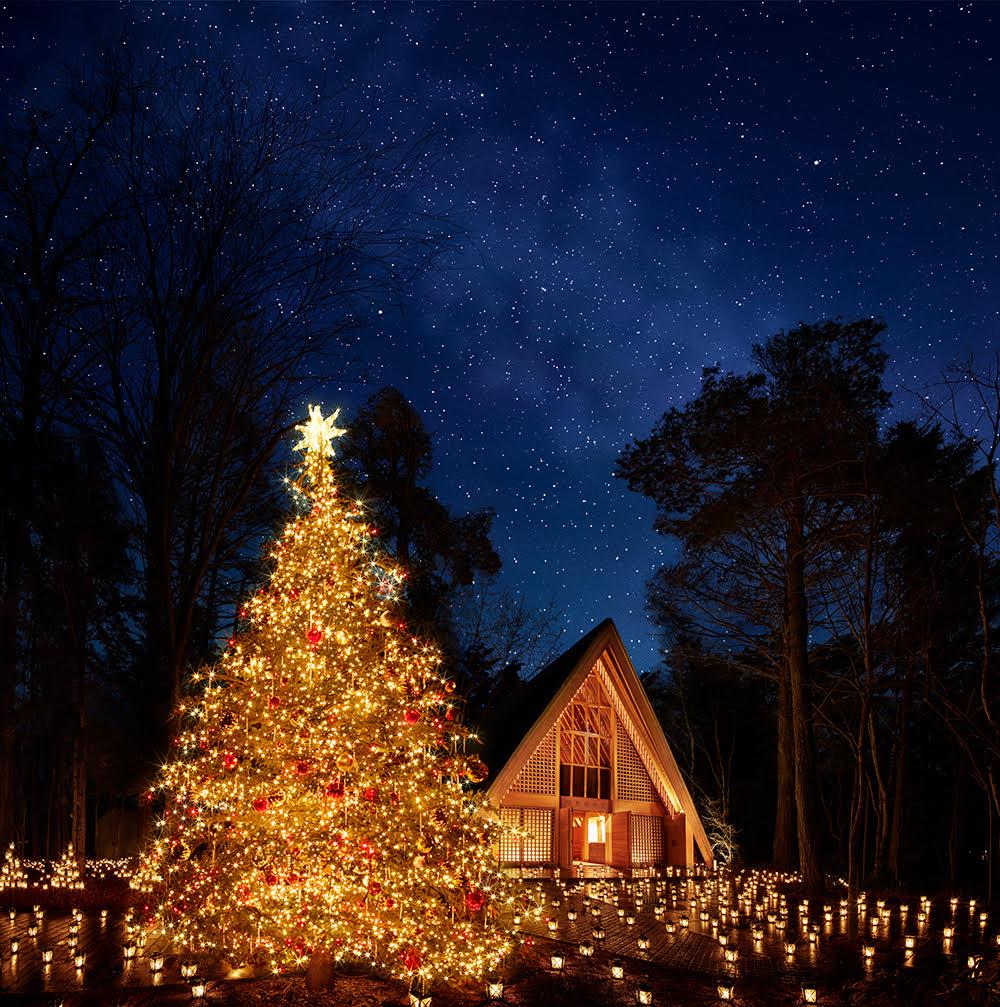 軽井沢高原教会 聖なる森のクリスマス 「クリスマスキャンドルナイト 2017」開催