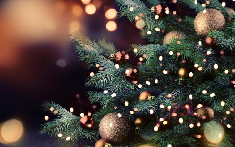 ■クリスマスや年内までに「恋人がほしい」と思う人が増える