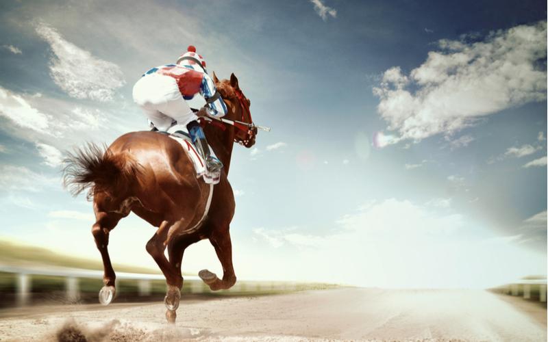 5.「駿馬」
