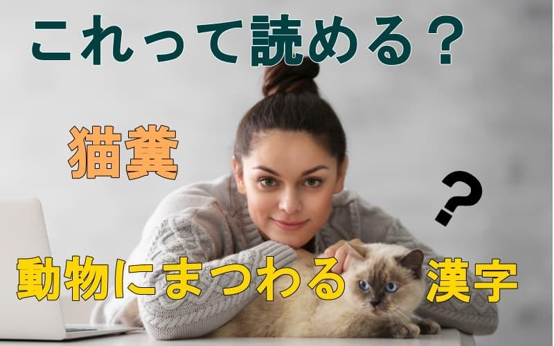 「猫糞」=?これって読める?動物にまつわる漢字4つ