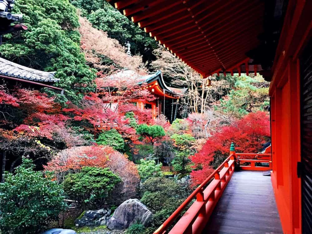 日本の絶景もやはり素晴らしい!