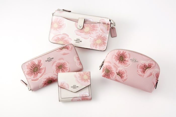 大きく咲き誇る桜の花がピンクの