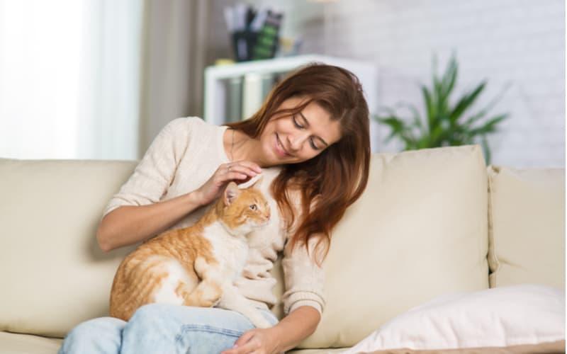 (2)猫好きな女性