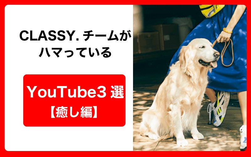 CLASSY.チームがハマっているYouTube3選 【癒し編】