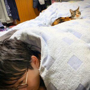 おしゃれな人の猫ぐらしが見たい!【ONLINE編集室・菅谷の場合】