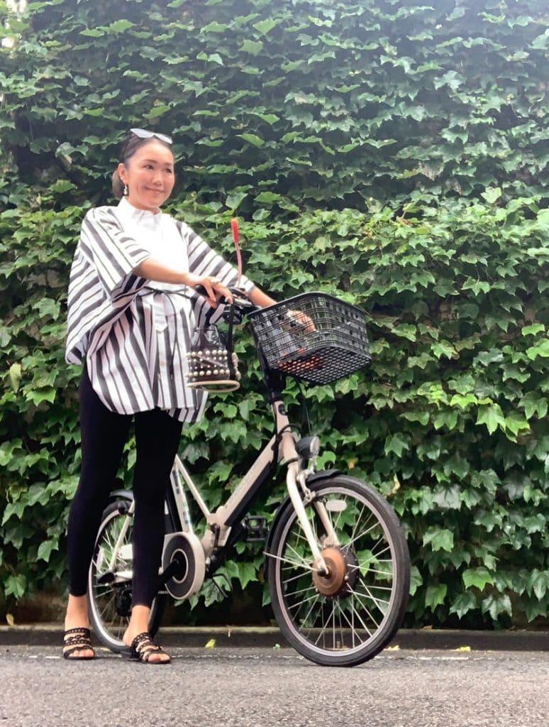 自転車:Panasonic S